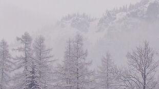 """W Tatrach zeszła lawina. """"Warunki są obecnie bardzo trudne"""""""